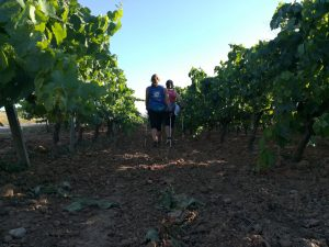 Nordic walking-marxa nordica-vilafranca del penedes - Catalonia Adventures